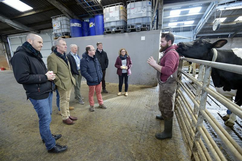 International rural conference visits Parkend Farm - host
