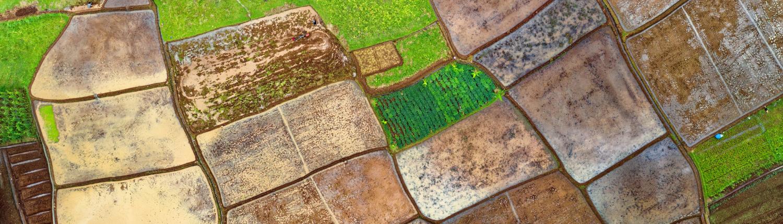 Precision soil mapping - Agri-EPI - Agri-tech enabler
