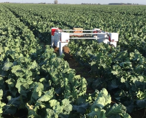The University of Lincoln's Thorvald agricultural robot in action