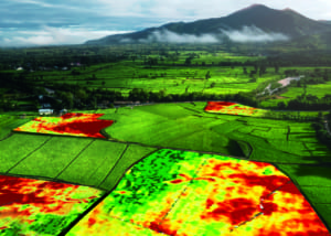 Because of GRID farmers are now accessing advanced satellites to provide near-live images of fields and crop damage