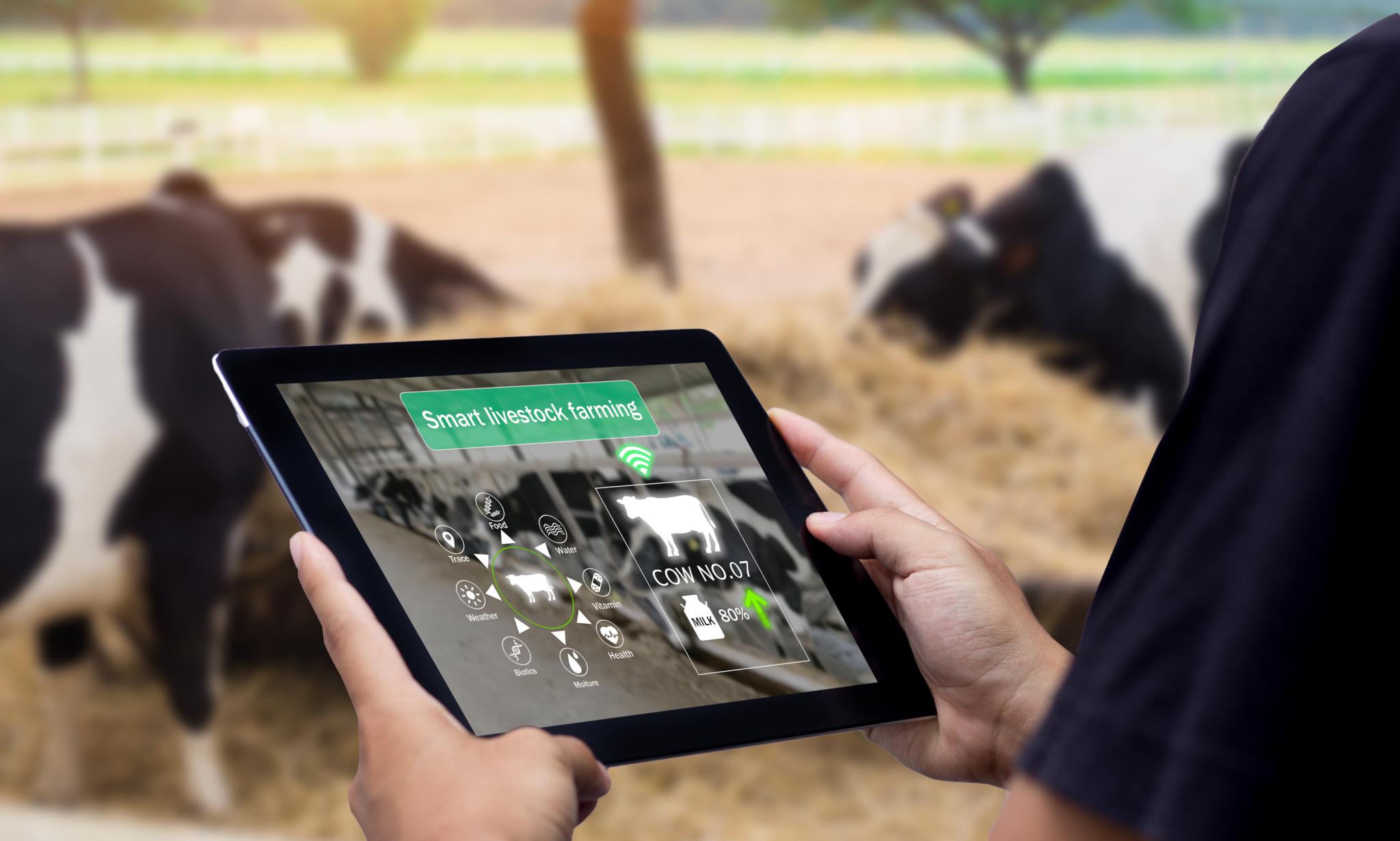 Smart Agri-tech livestock farming
