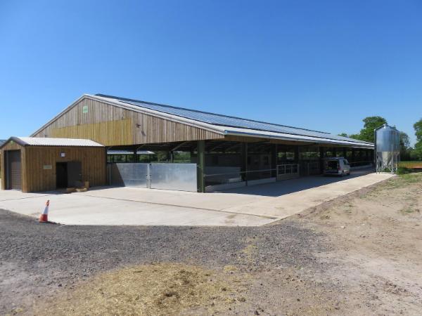 Agri-EPI Midlands Dairy Research Centre | Harper Adams University | Research Farm | cow behaviour | Livestock farming Precision Technology