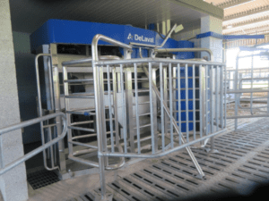 Agri-EPI Midlands Dairy Research Centre   Harper Adams University   Research Farm   cow behaviour   Livestock farming Precision Technology
