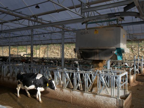 Agri-EPI South West Dairy Development Livestock Farming