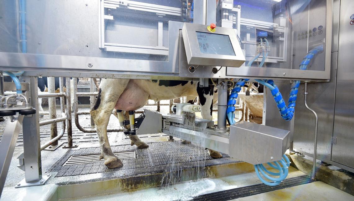 Agri-EPI Livestock & Dairy Solutions