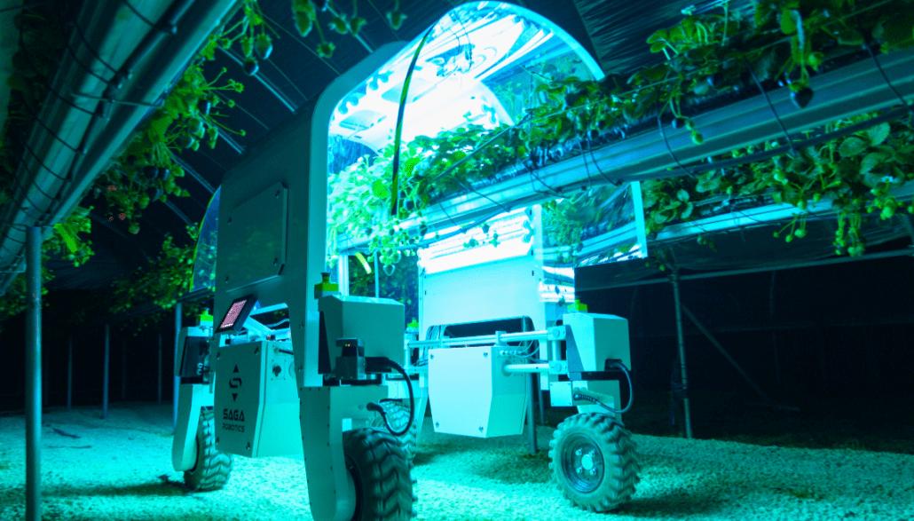 Saga Robotics and the Modular Robotic Platform Thorvald