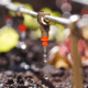Aquapulse Water Technology polytunnel irrigation