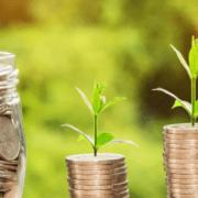 Ten tips for grant funding bid writing | Agri-EPI blog | start-up, SME, scale-up