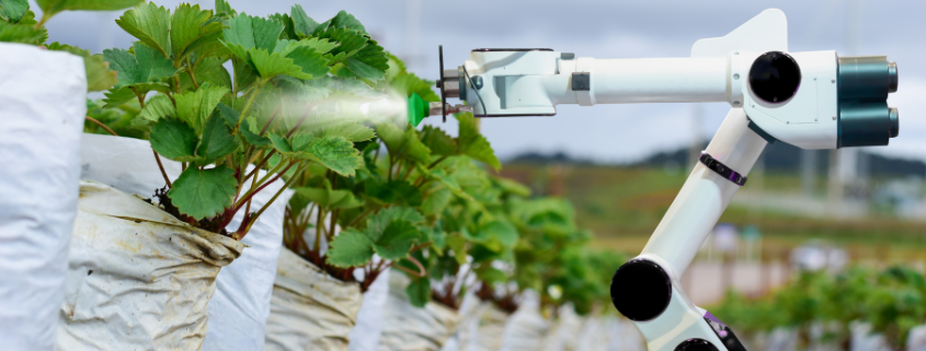 Webinar 'How to develop an agri sector solution from idea to reality'