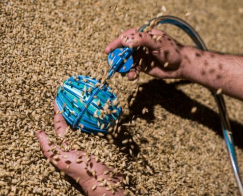 Crover grain swimming robot