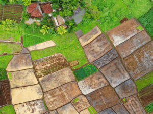 Precision-Soil-Mapping-WP-image-600x450-1-300x225