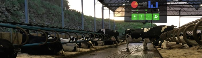 SmARtview cow recognition and data retrieval system