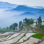 Agritech China