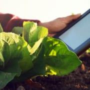 Agri-Tech Future Funding