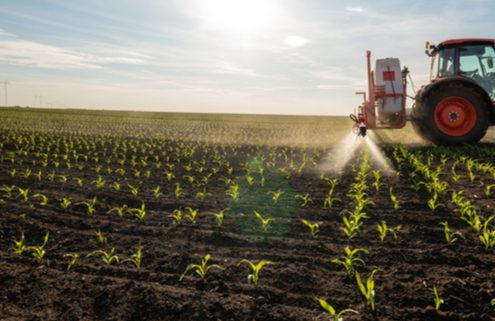 DEFRA announces new agritech project funding